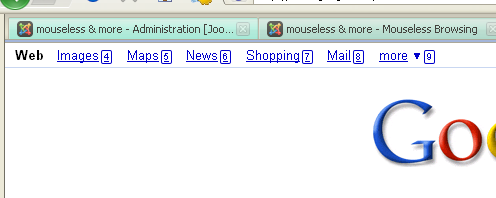 Mouseless browsing screenshot